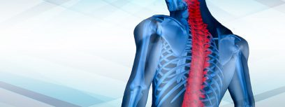 Spinal Injury Rehabilitation Services