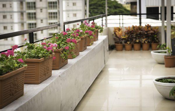 SuVitas Bangalore Terrace